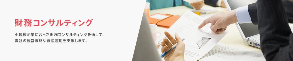 財務コンサルティング 小規模企業に合った財務コンサルティングを通して、貴社の経営戦略や資産運用を支援します。
